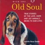 """Dog with Old Soul"""